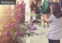 Pige vander blomster
